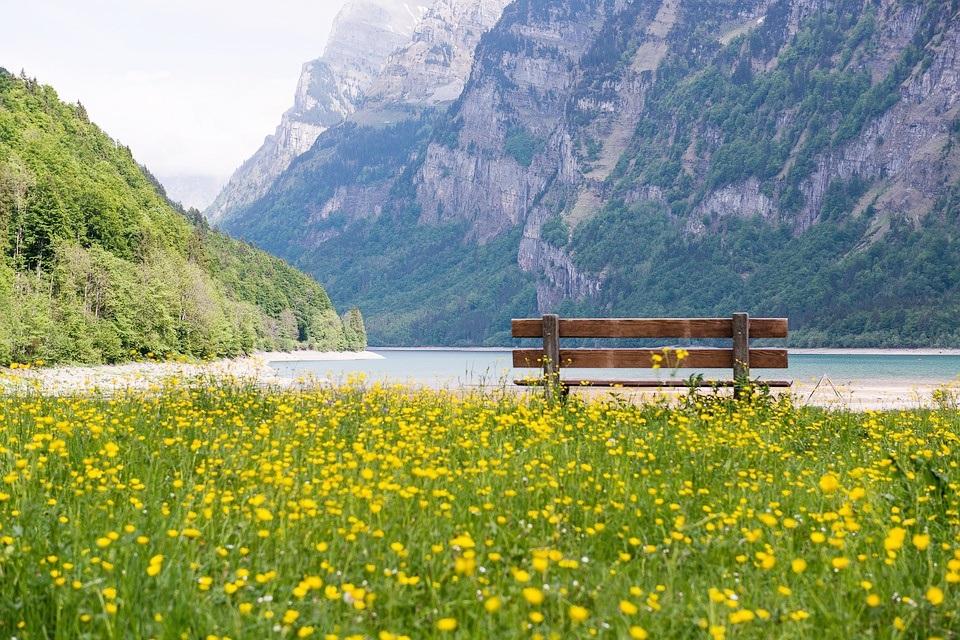 Dirigir na Suíça