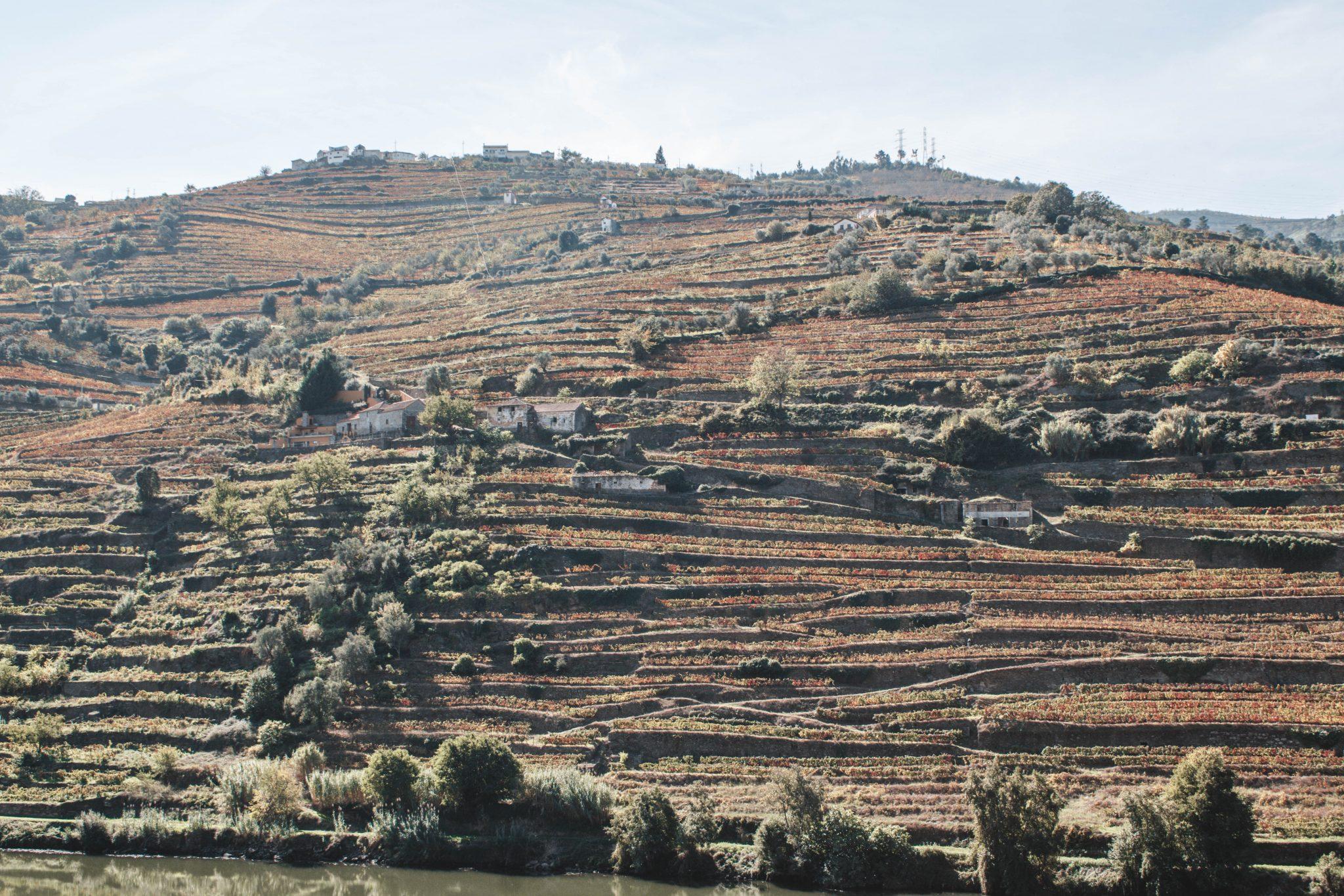 Dicas de viagem do Vale do Douro em Portugal
