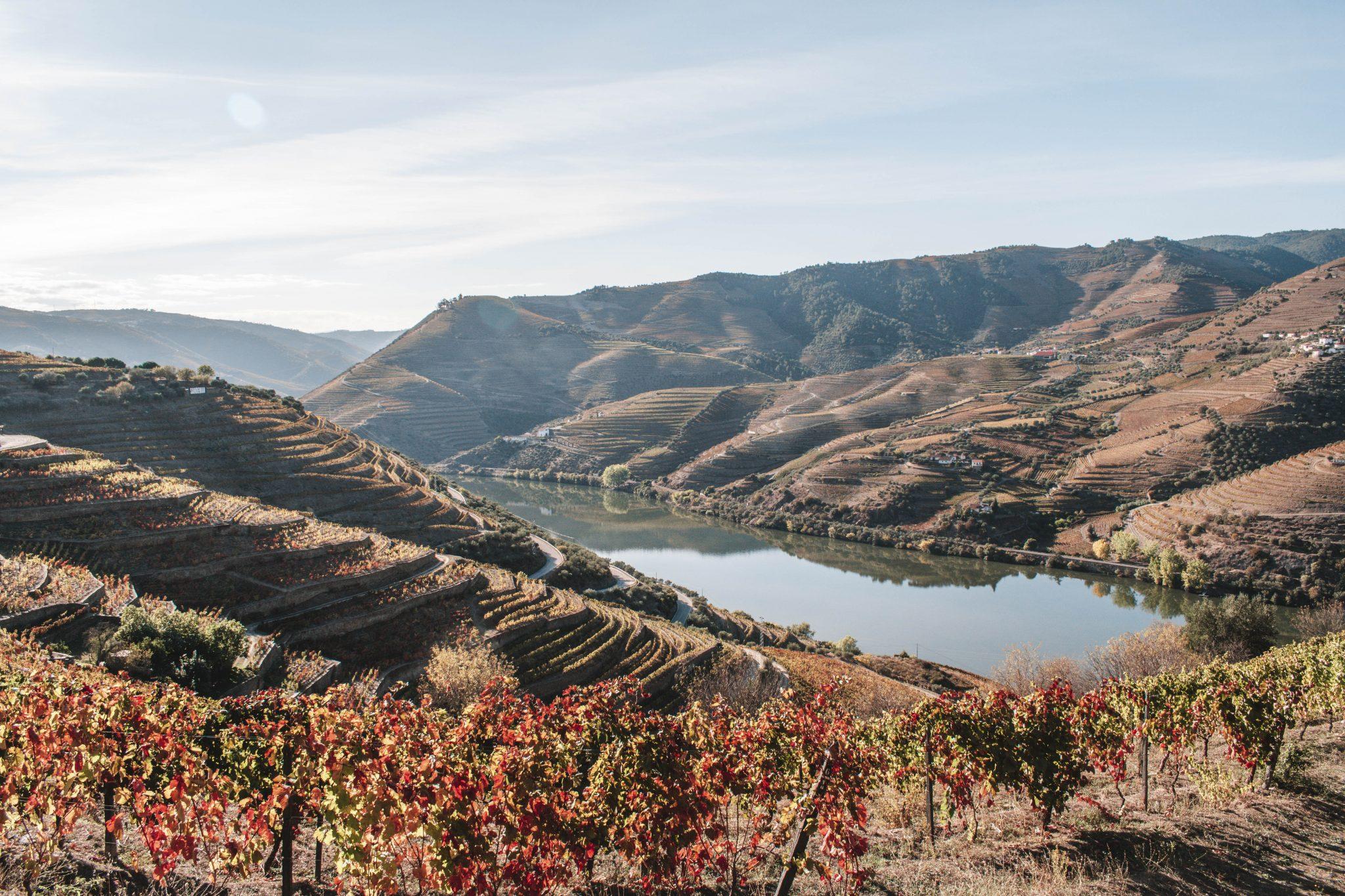 Vale do Douro em Portugal dicas de viagem